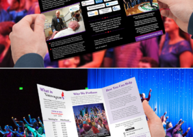 Performance Organization Brochure