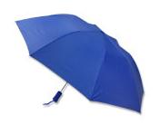 umbrella_small