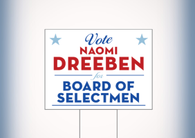Political Election Yard Signs